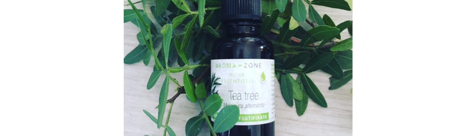 Huile Essentielle de Tea Tree/Arbre à Thé
